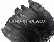 Black goose nagoire feathers millinery craft Wholesale bulk strung