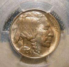 1913 TYPE 1 BUFFALO NICKEL PCGS MS 66 IMMACULATE SUPERB GEM UNIMPROVABLE STRIKE!