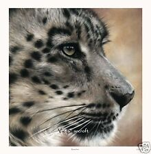 'Ranschan' Limited Edition Print, Snow Leopard print by Vic Bearcroft