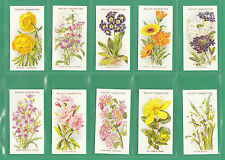 More details for flowers - 10  sets of 50 wills ' old english garden flowers ' cards  reprints