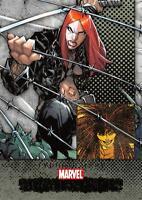 TYPHOID MARY / Marvel Beginnings Series 1 BASE Trading Card #174