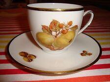 Antique Hutschenreuther Hohenberg Cup & Saucer Porcelain Olivia Fruit Design PE
