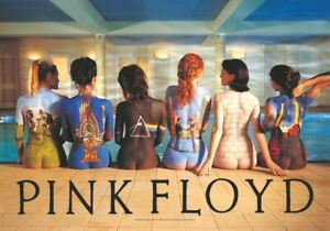 "Pink Floyd Fabric Poster Flag 30"" x 43"" Back Catalog"