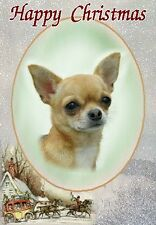 Chihuahua Dog A6 Christmas Card Design Xchih-37 by Paws2print