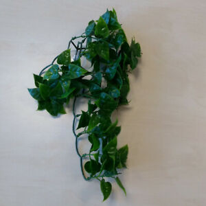 Terrarium Kunstpflanze - Mexican Phyllo S ca. 30cm Hängepflanze, Plastikpflanze