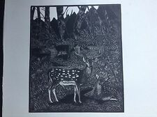 1930s Wood Engraving Print of deer, stag at Selborne by Eric Fitch Daglish
