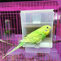 Beweis-Vogel-Geflügel-Zufuhr-automatische Acrylnahrungsmittelbehälter-Papag W4Z5