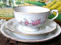 Chodziez Rose Teacup Trio Gray Fern Leaf Teacup Saucer and Luncheon Plate