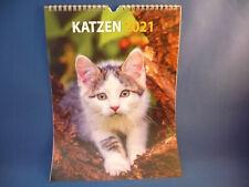Fotokalender Bildkalender 2021 - Katzenbabys, 33x24cm, zum Aufhängen !