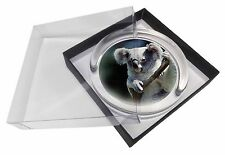 More details for cute koala bear glass paperweight in gift box christmas present, akb-1pw