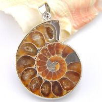 Huge! Holiday Gift Natural Handmade Ammonite Fossil Gems Silver Pendant necklace