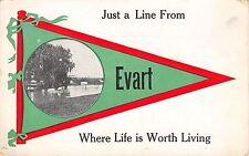 """Life is Worth Living"" in Evart Michigan~Bridge~1913 Pennant Postcard"