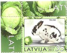 Latvia  Lettland  Lettonie animal Rabbit, hase , hare  stamp   2011 MNH