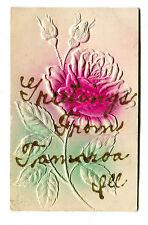 Vintage Postcard Greetings from TAMAROA IL Illnois embossed Rose UDB 1909 glittr