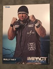 BULLY RAY TNA WRESTLING 8X10 PROMO PHOTO UN-SIGNED WWE ECW ROH WCW WWF NXT