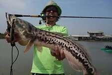 Abu Garcia Bass Rod Bait World Monster WMC - 705 L F/S from JAPAN