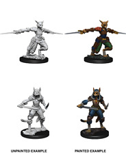 D&D Nolzur's Marvelous Unpainted Miniatures: Female Tabaxi Rogue