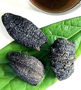 Australian Wild Sea Cucumber Large Size - 500g or 1kg 澳洲 野生 海參