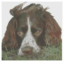 Springer Spaniel Cross Stitch Kit por florashell