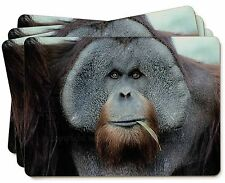 Handsome Orangutan Picture Placemats in Gift Box, AM-2P