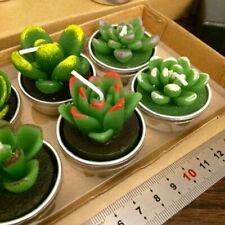 Cactus Succulent Candles Tealight Handmade Cute Decorative Creative Home Candles