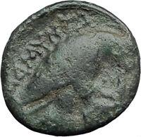 AMYNTAS III of Macedonia 393BC Hercules Eagle Serpent Ancient Greek Coin i62865