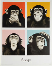 CHIMPS POPART POSTER (40x50cm) STEEZ MONKEY NEW LICENSED ART