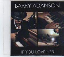 (DT38) Barry Adamson, If You Love Her - 2013 DJ CD