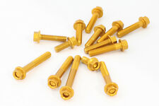 EVOTECH KIT VITI CARENA FAIRING BOLTS KIT YAMAHA TMAX 530 2012-2016 ORO GOLD