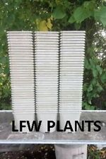 100 X 2 LITRE GREY SQUARE TOP PLASTIC PLANT POTS - USED