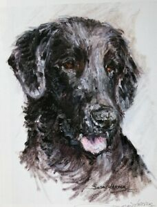 SALE Flatcoat Retriever Signed Dog Print by Susan Harper Unmounted