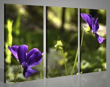 Quadri moderni paesaggi ORCHIDEA VOL V fiori stampe su tela canvas 130x90