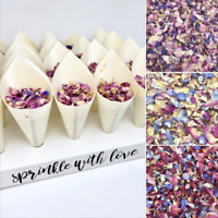20 Biodegradable Bamboo Confetti CONES Dried Petal CONFETTI + Stand TRAY Holder
