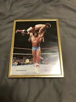 WWF LJN Black Card Wrestling Superstars ULTIMATE WARRIOR Framed Photo
