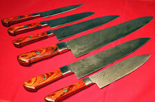 CUSTOM MADE DAMASCUS BLADE 6Pcs. CHEF/KITCHEN KNIVES SET (ZE-071-O)