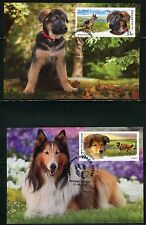 2016. Russia. DOGS.The German Shepherd and the Scottish Shepherd (collie). MC