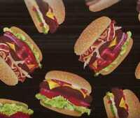 Hamburgers food Timeless Treasures 7 inch piece fabric