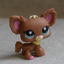 Chihuahua Chien Papillon #1623 Action Figure gift  LPS mini LITTLEST PET SHOP
