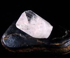 RARE & POWERFUL DANBURITE Synergy 12 stone Pleiadian Starbrary Crystal #164