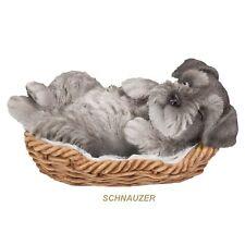Schnauzer Sleeping in Basket Puppy Dog Figurine