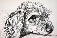 Lucy Dawson 1937 COCKER SPANIEL PORTRAIT - Vintage Dog Art Print Matted
