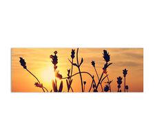 150x50cm Leinwandbild Panorama Sunset Sonnenuntergang Meer Blumen Sonne Caro Art