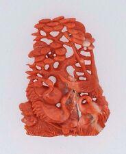 Coral Plaque