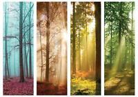 VLIES   Fototapete XXL Wald Tapete Vliestapete 15F0249260