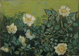 Vincent Van Gogh Wild roses Poster Reproduction Paintings Giclee Canvas Print