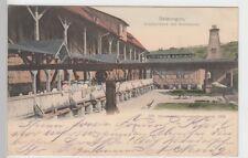 (104724) AK Salzungen, Gradierwerk mit Storchnest, 1906