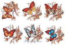 Ceramic Decals Butterflies/Butterfly & Floral 6 designs