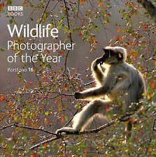 Wildlife Photographer of the Year: Portfolio 16 by Ebury Publishing (Hardback, …