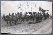 Visalia California Mule Team Farmers Rppc Real Photo Postcard;H407