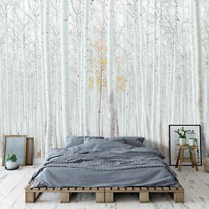 Fototapete WALD Birken Landschaft Bäume weiß Natur Wohnzimmer Vlies Schlafzimmer